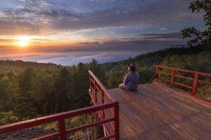 "Baru !!! Gardu Pandang pinus Asri ala ""hutan pacific northwest"", Bantul, Yogyakarta2"