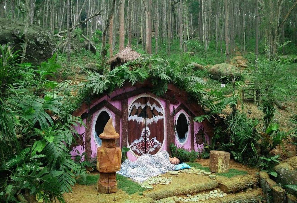 Pergi ke Negeri Dongeng di Rumah Hobbit Hutan Pinus Dlingo Bantul