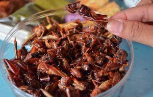 12 Kuliner Jogja yang Tidak Wajar Tapi Patut di Coba