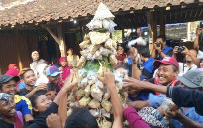 Unik, Petani di Gunungkidul Rayakan Ulang Tahun Sapinya