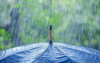 Info Cuaca Hari Ini – BMKG Prediksi Berawan Sampai Hujan Ringan