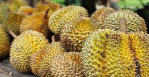 Malam 1000 Durian, Ribuan Warga Penuhi Jalan Prof Herman Yohanes Yogya