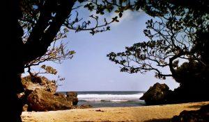 Ada Pantai Indah yang Tersembunyi di Gunungkidul